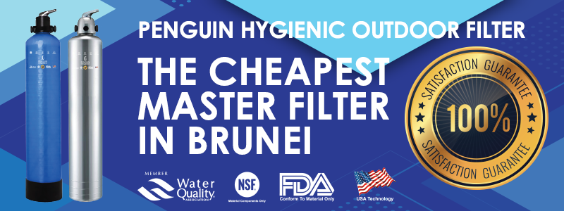 Penguin Hygienic Master Filter